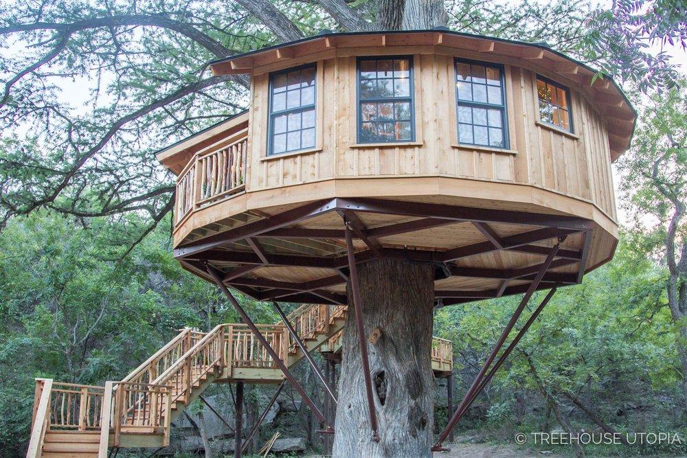 Cse Mccauley Blogwanderer Observerbibliotheque Treehouse
