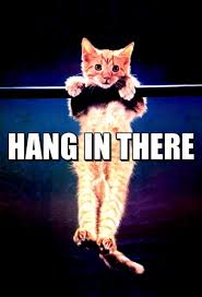 Image result for hang in there